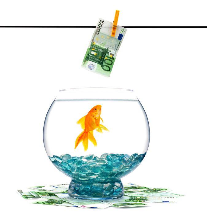 Quizz économie et finances 4